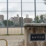 寺田町公園(北側)