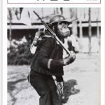 天王寺区広報紙8月号「企画展『戦時中の動物園』」