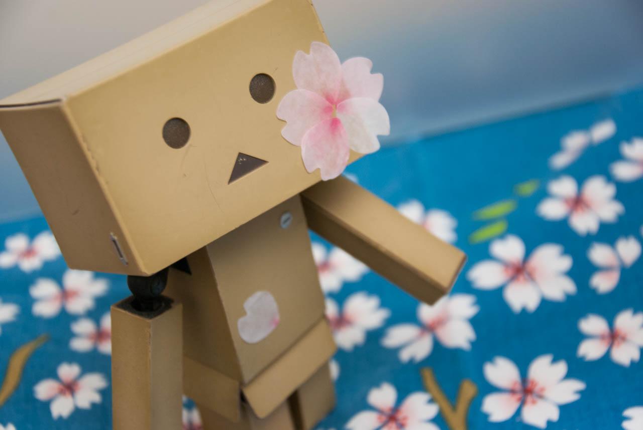 雨の日でも手元に桜が咲く「一枚ずつめくれるマスキングテープ さくらの花びら」