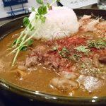 帰ってきたヒゲボーズ、和風ダシカレーのNo.1@中崎町「Zipangu Curry Cafe` 和風カレーHiGE BozZ」